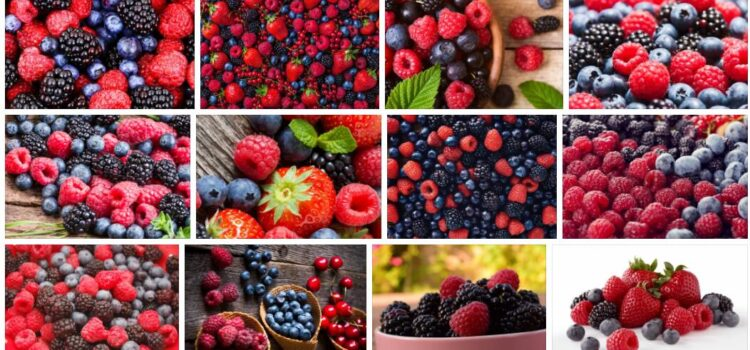 Meaning of Berry