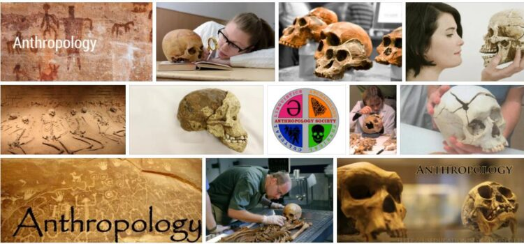 Meaning of Anthropology