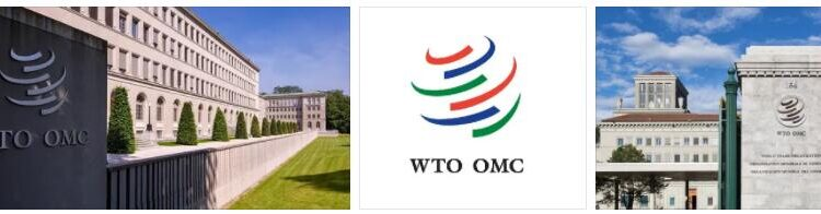 WTO Guide