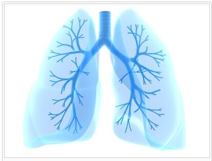 Allergic Bronchopulmonary Aspergillosis Guide